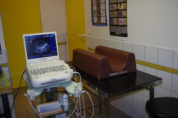 clinique v t rinaire reims salle d 39 chographie. Black Bedroom Furniture Sets. Home Design Ideas